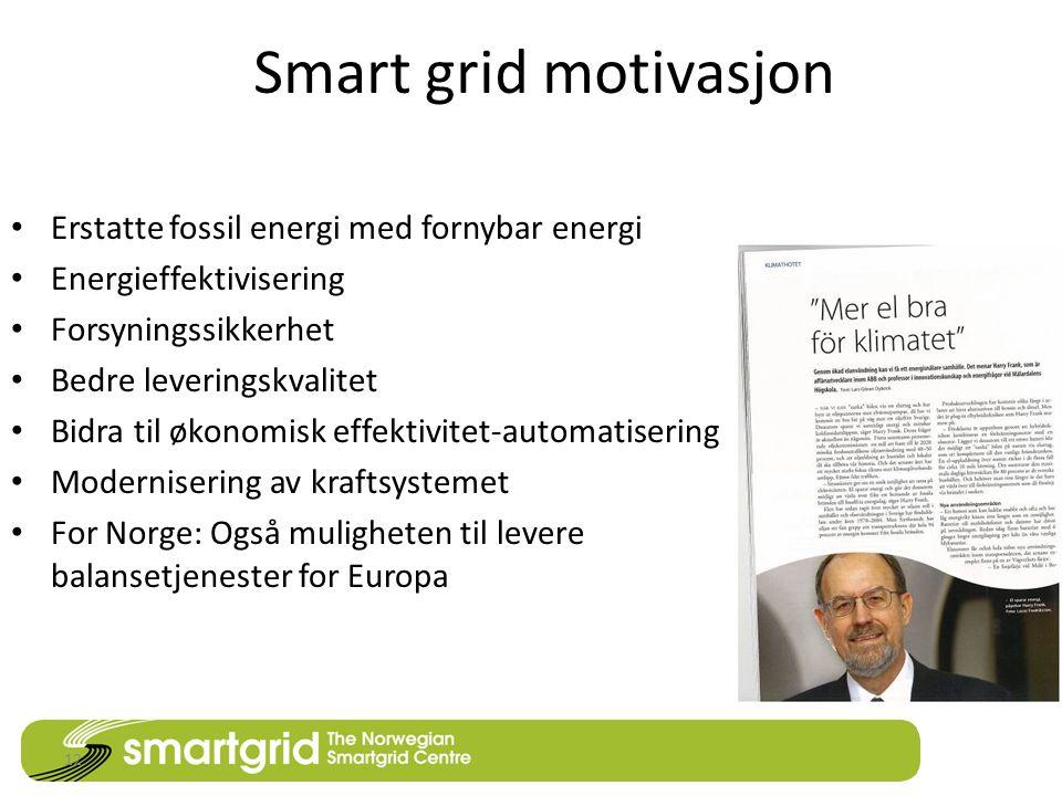 Smart grid motivasjon • Erstatte fossil energi med fornybar energi • Energieffektivisering • Forsyningssikkerhet • Bedre leveringskvalitet • Bidra til økonomisk effektivitet-automatisering • Modernisering av kraftsystemet • For Norge: Også muligheten til levere balansetjenester for Europa 12