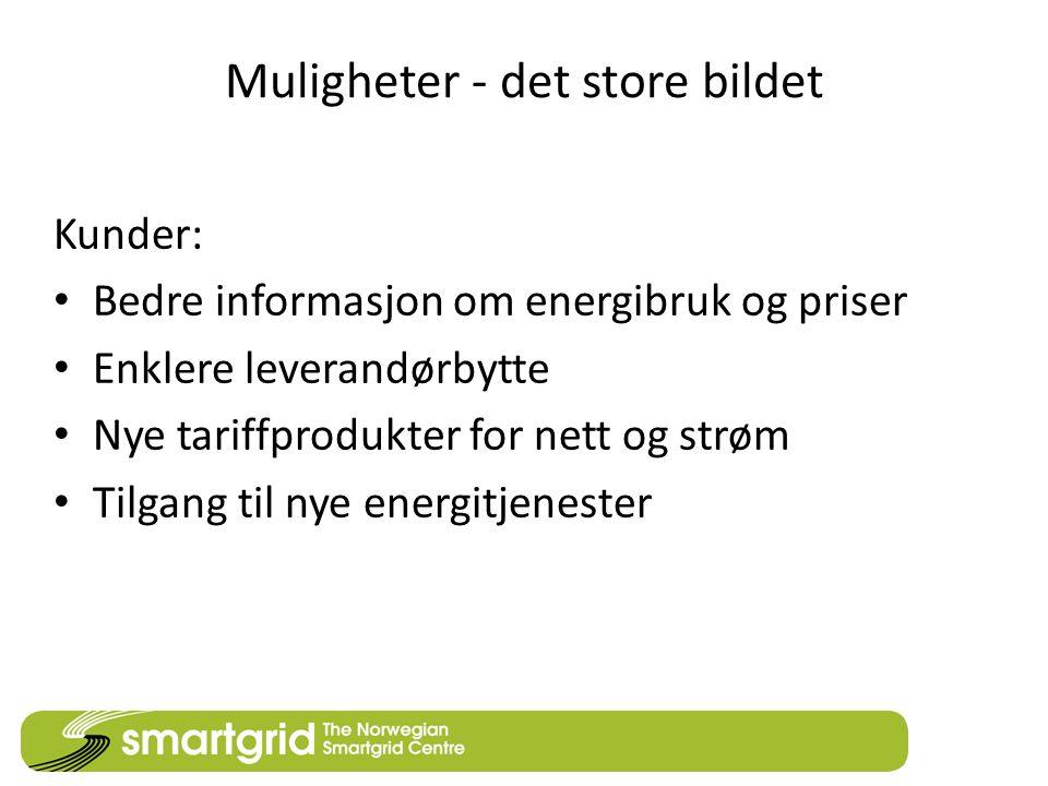 Muligheter - det store bildet Kunder: • Bedre informasjon om energibruk og priser • Enklere leverandørbytte • Nye tariffprodukter for nett og strøm • Tilgang til nye energitjenester