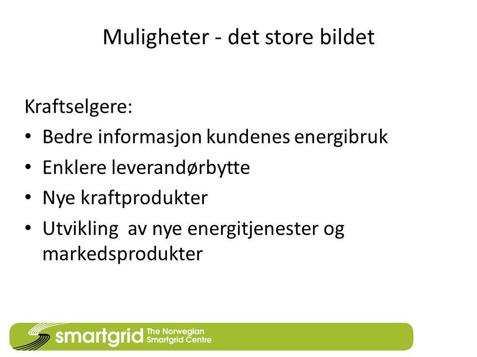 Muligheter - det store bildet Kraftselgere: • Bedre informasjon kundenes energibruk • Enklere leverandørbytte • Nye kraftprodukter • Utvikling av nye energitjenester og markedsprodukter