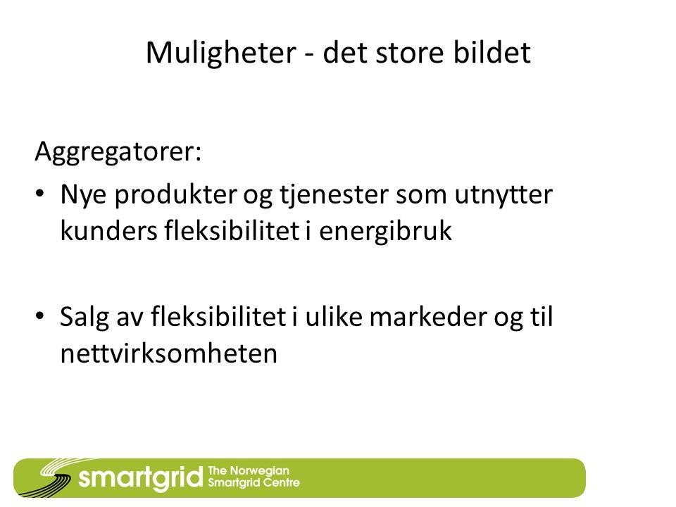 Muligheter - det store bildet Aggregatorer: • Nye produkter og tjenester som utnytter kunders fleksibilitet i energibruk • Salg av fleksibilitet i ulike markeder og til nettvirksomheten
