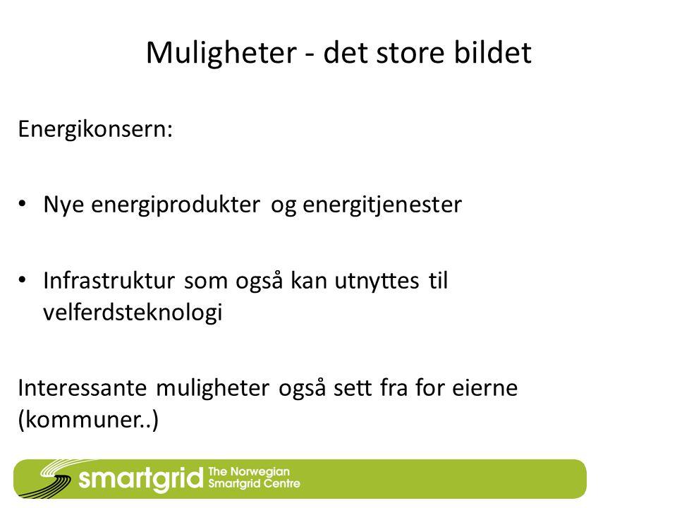 Muligheter - det store bildet Energikonsern: • Nye energiprodukter og energitjenester • Infrastruktur som også kan utnyttes til velferdsteknologi Interessante muligheter også sett fra for eierne (kommuner..)