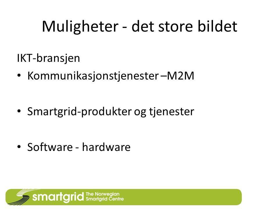 Muligheter - det store bildet IKT-bransjen • Kommunikasjonstjenester –M2M • Smartgrid-produkter og tjenester • Software - hardware