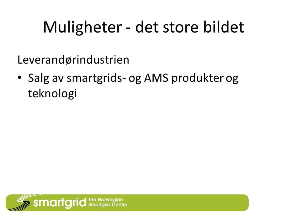 Muligheter - det store bildet Leverandørindustrien • Salg av smartgrids- og AMS produkter og teknologi