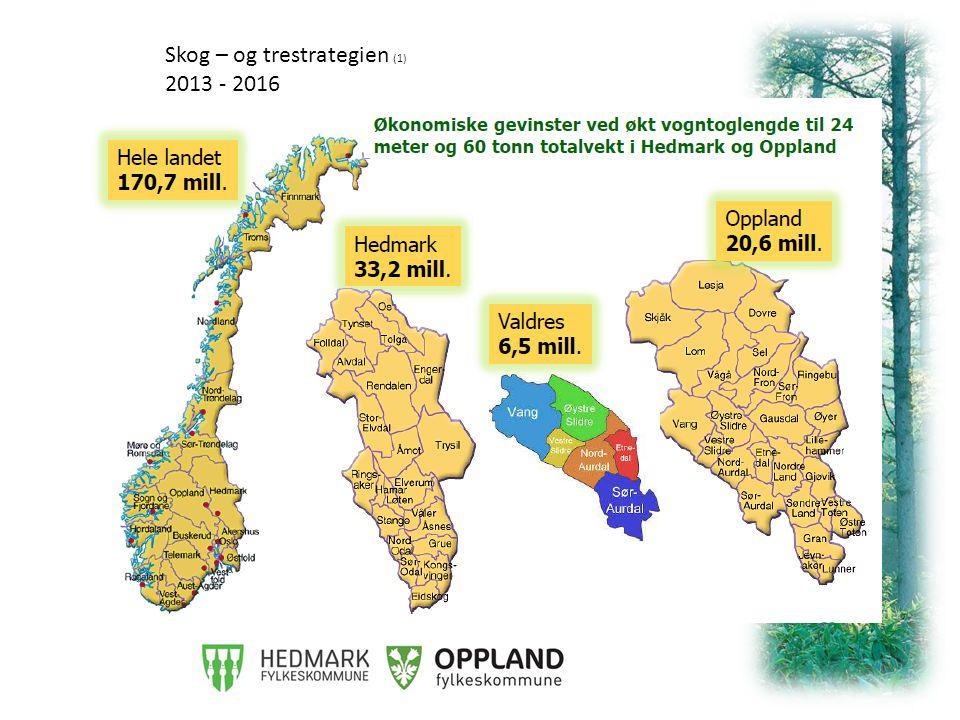 Skog – og trestrategien (1) 2013 - 2016