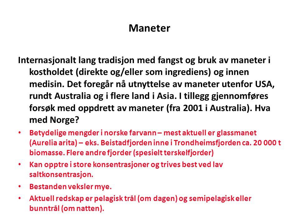 Maneter Internasjonalt lang tradisjon med fangst og bruk av maneter i kostholdet (direkte og/eller som ingrediens) og innen medisin. Det foregår nå ut
