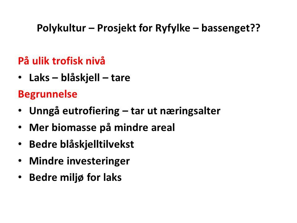 Polykultur – Prosjekt for Ryfylke – bassenget?? På ulik trofisk nivå • Laks – blåskjell – tare Begrunnelse • Unngå eutrofiering – tar ut næringsalter