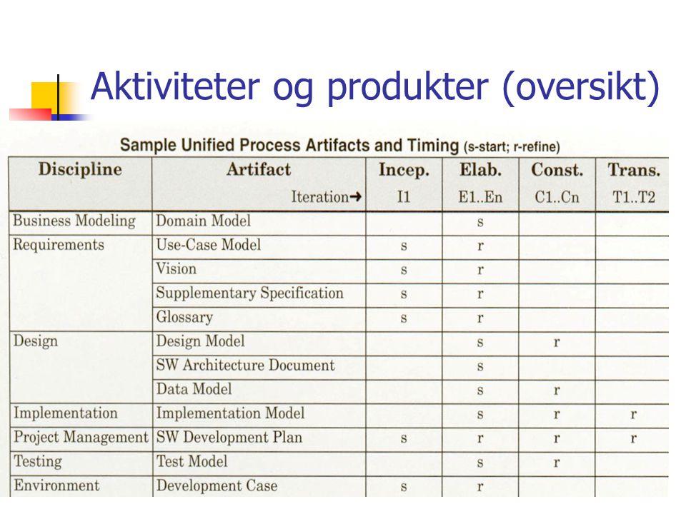 6 Aktiviteter og produkter (oversikt)