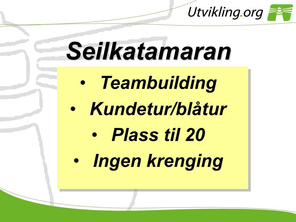 Seilkatamaran •Teambuilding •Kundetur/blåtur •Plass til 20 •Ingen krenging