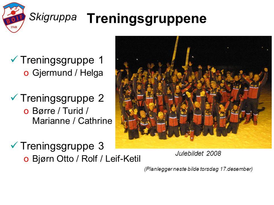 Skigruppa Treningsgruppene  Treningsgruppe 1 oGjermund / Helga  Treningsgruppe 2 oBørre / Turid / Marianne / Cathrine  Treningsgruppe 3 oBjørn Otto