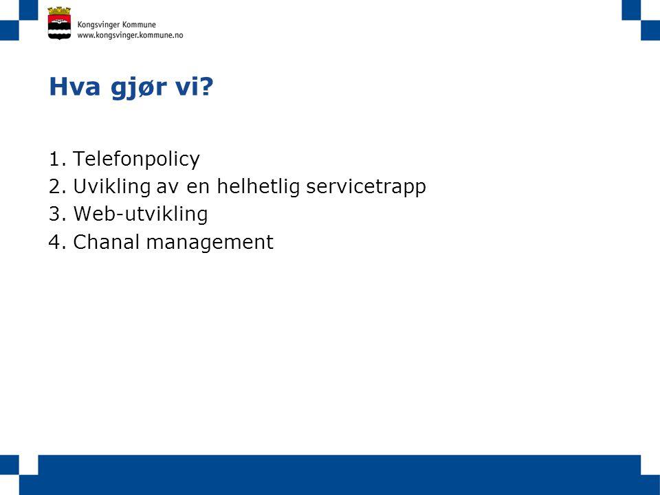 Hva gjør vi? 1.Telefonpolicy 2.Uvikling av en helhetlig servicetrapp 3.Web-utvikling 4.Chanal management