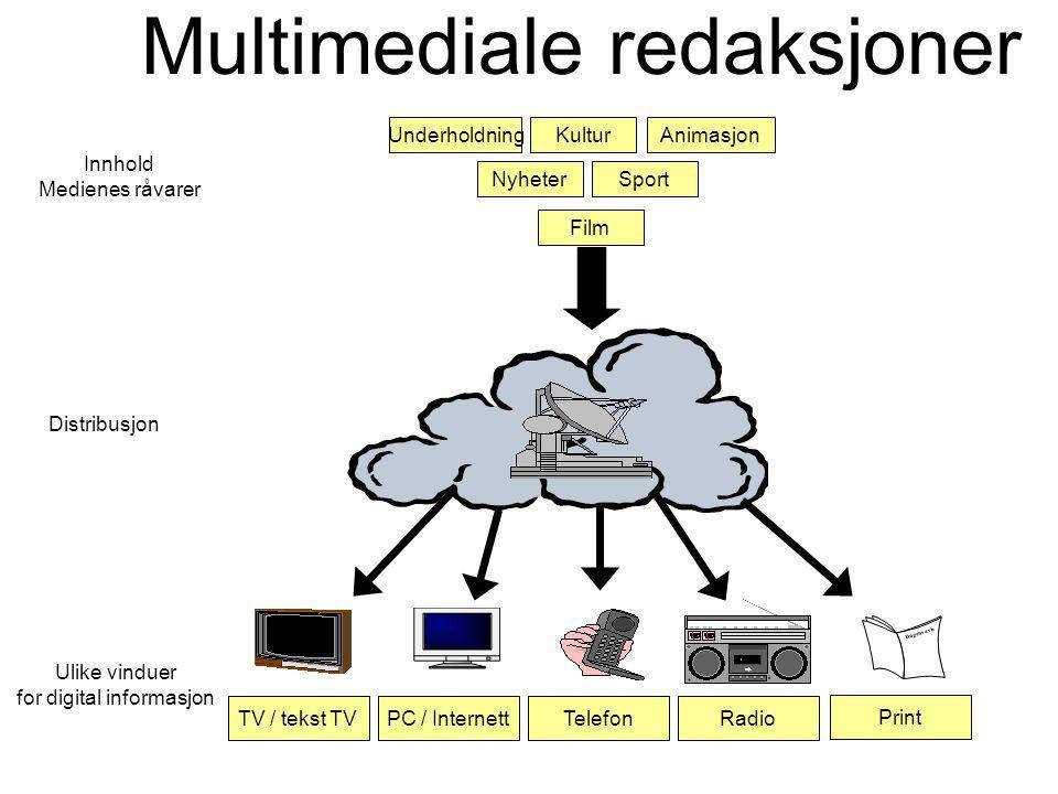 Innhold Medienes råvarer Ulike vinduer for digital informasjon Distribusjon Multimediale redaksjoner Film NyheterSport UnderholdningKulturAnimasjon PC