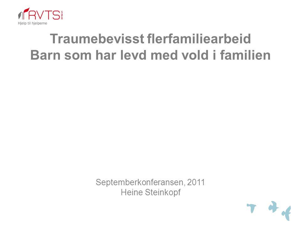 Flerfamiliefokus (Multi-family therapy)