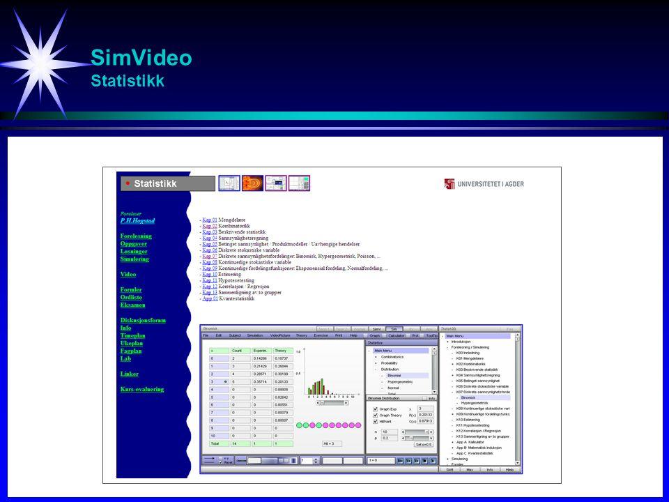 SimVideo Statistikk