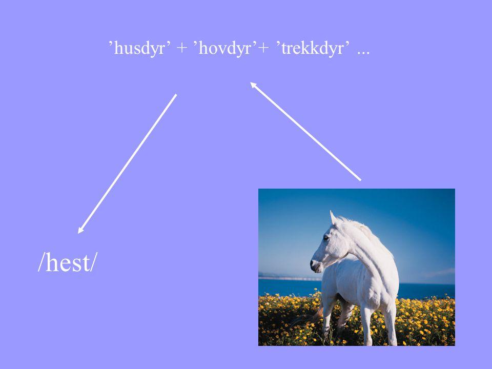 /hest/ 'husdyr' + 'hovdyr'+ 'trekkdyr'...
