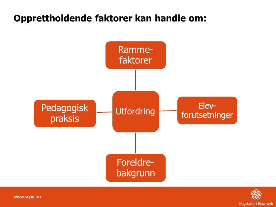 Opprettholdende faktorer kan handle om: www.sepu.no Utfordring Ramme- faktorer Elev- forutsetninger Foreldre- bakgrunn Pedagogisk praksis