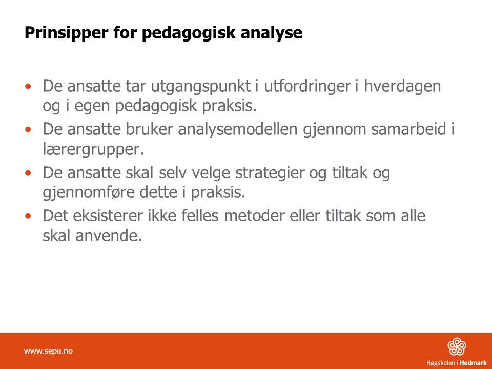 Prinsipper for pedagogisk analyse •De ansatte tar utgangspunkt i utfordringer i hverdagen og i egen pedagogisk praksis. •De ansatte bruker analysemode