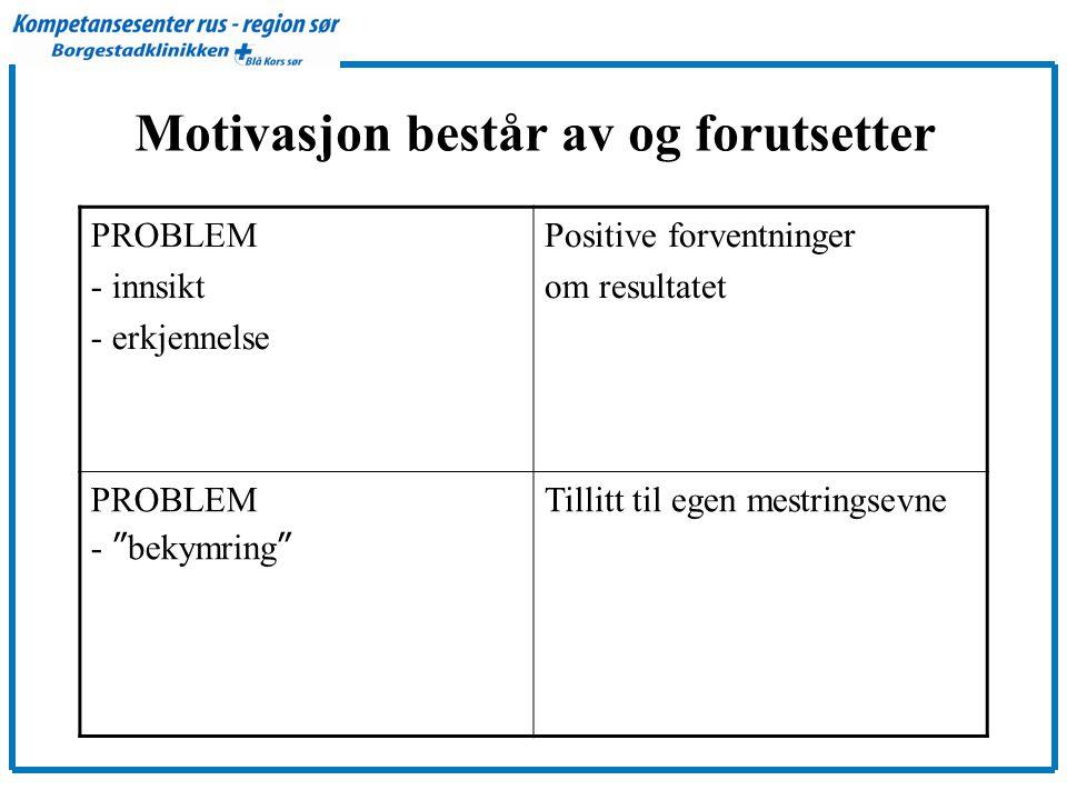 Motivasjon består av og forutsetter PROBLEM - innsikt - erkjennelse Positive forventninger om resultatet PROBLEM - bekymring Tillitt til egen mestringsevne