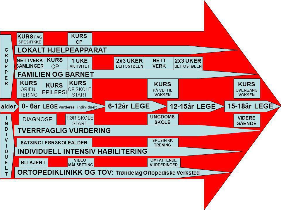 alder 0- 6år LEGE vurderes individuelt 6-12år LEGE12-15år LEGE15-18år LEGE GRUPPERGRUPPER FAMILIEN OG BARNET KURS ORIEN- TERING NETTVERK SAMLINGER KUR