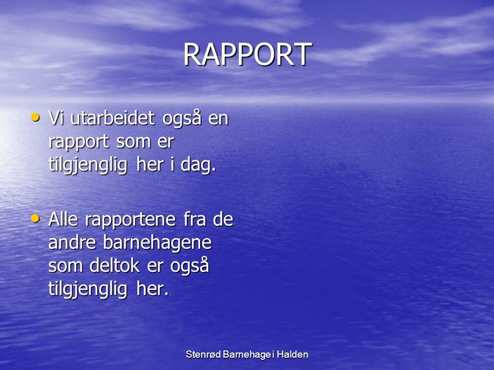RAPPORT • Vi utarbeidet også en rapport som er tilgjenglig her i dag. • Alle rapportene fra de andre barnehagene som deltok er også tilgjenglig her.