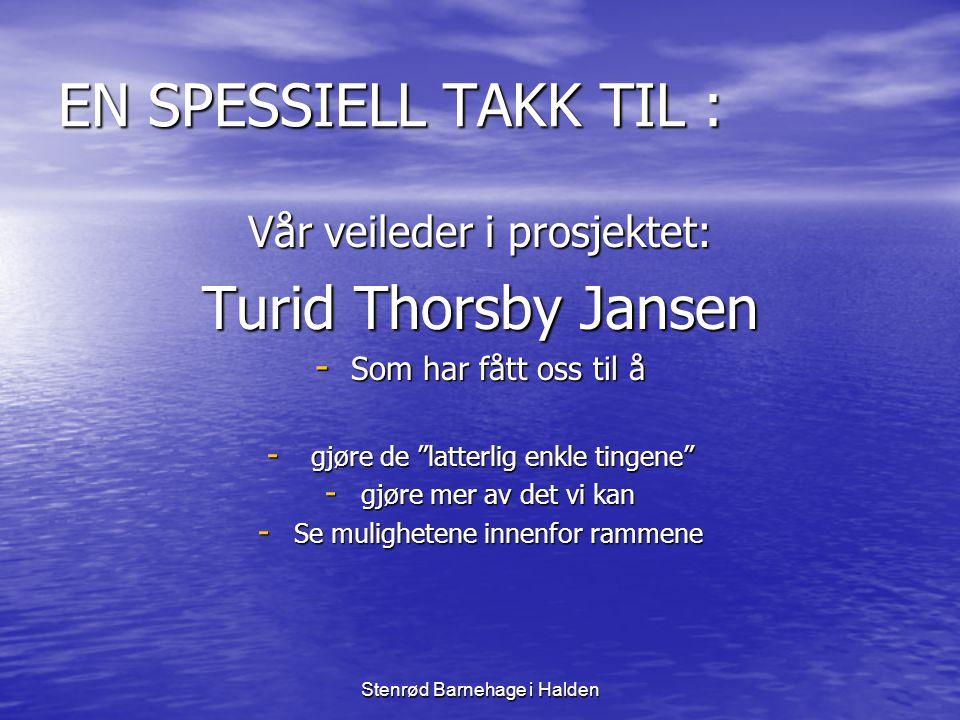 """Stenrød Barnehage i Halden EN SPESSIELL TAKK TIL : Vår veileder i prosjektet: Turid Thorsby Jansen -S-S-S-Som har fått oss til å - g- g- g- gjøre de """""""