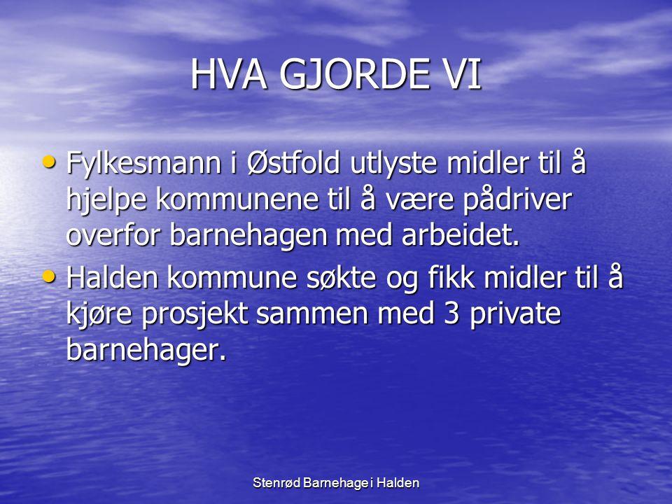 Stenrød Barnehage i Halden HVA GJORDE VI • Fylkesmann i Østfold utlyste midler til å hjelpe kommunene til å være pådriver overfor barnehagen med arbei
