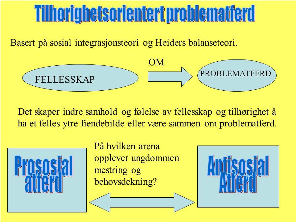 Basert på sosial integrasjonsteori og Heiders balanseteori.