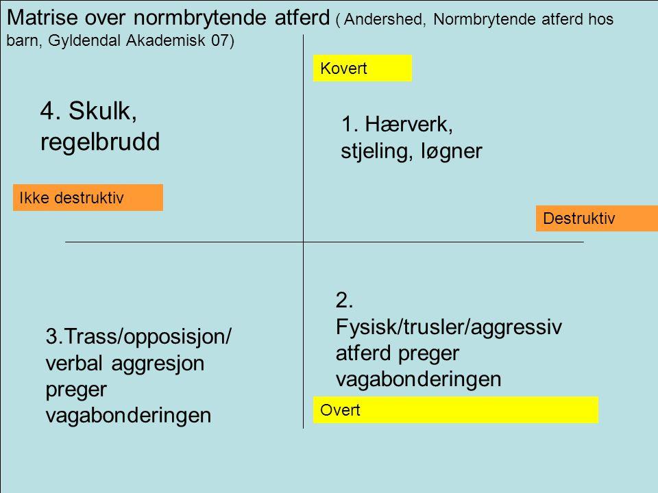 Matrise over normbrytende atferd ( Andershed, Normbrytende atferd hos barn, Gyldendal Akademisk 07) Overt Kovert Ikke destruktiv Destruktiv 2.