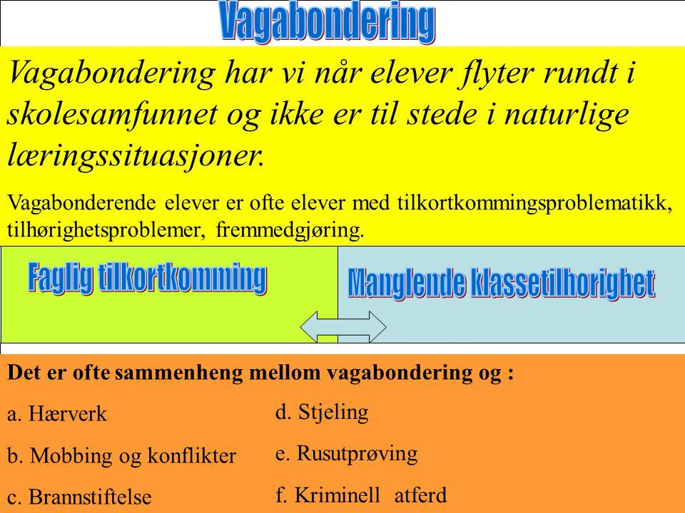 1.Grovt skadeverk : Ruteknusing-grov tagging- ødelegging av inventar-vannskader-brann.