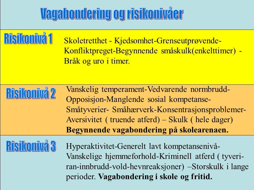 Skoletretthet - Kjedsomhet-Grenseutprøvende- Konfliktpreget-Begynnende småskulk(enkelttimer) - Bråk og uro i timer.