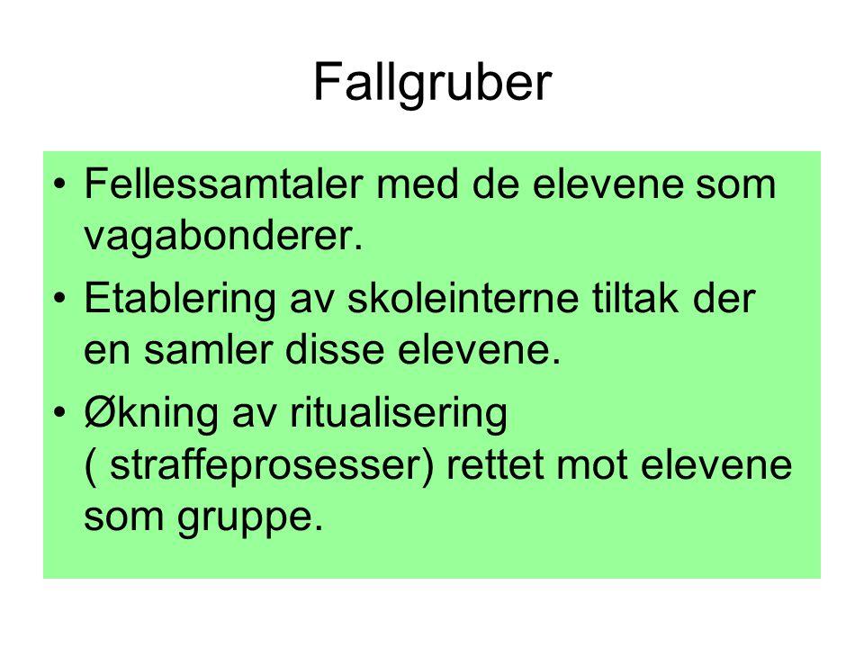 Fallgruber •Fellessamtaler med de elevene som vagabonderer.