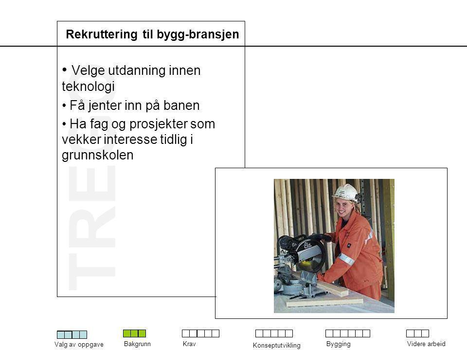 TREGO Valg av oppgave BakgrunnKrav Konseptutvikling ByggingVidere arbeid Bygging av modell • Modell for å teste konstruksjonsprinsipper • Finne svakheter og styrker • Kunne gjennomføre en brukertest