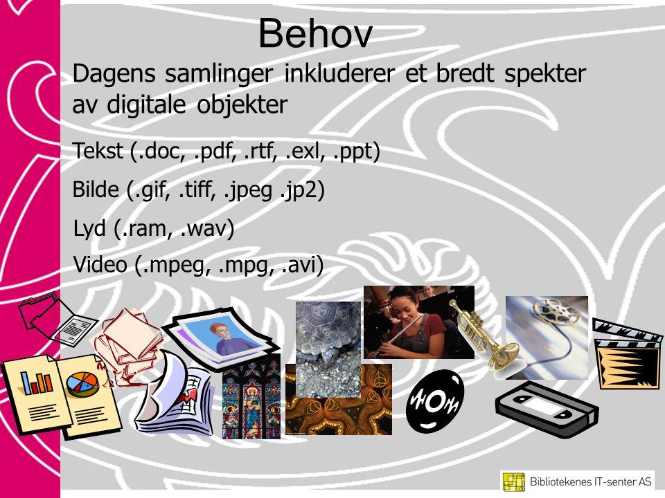 Dagens samlinger inkluderer et bredt spekter av digitale objekter Tekst (.doc,.pdf,.rtf,.exl,.ppt) Bilde (.gif,.tiff,.jpeg.jp2) Lyd (.ram,.wav) Video (.mpeg,.mpg,.avi) Behov
