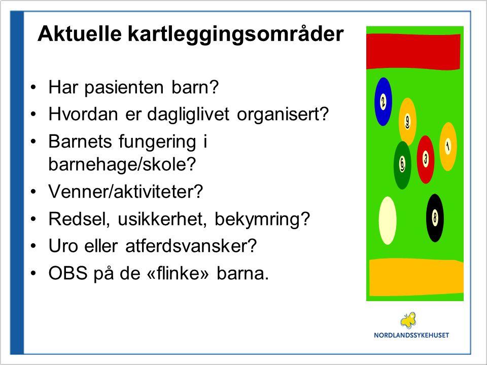 Aktuelle kartleggingsområder •Har pasienten barn.•Hvordan er dagliglivet organisert.
