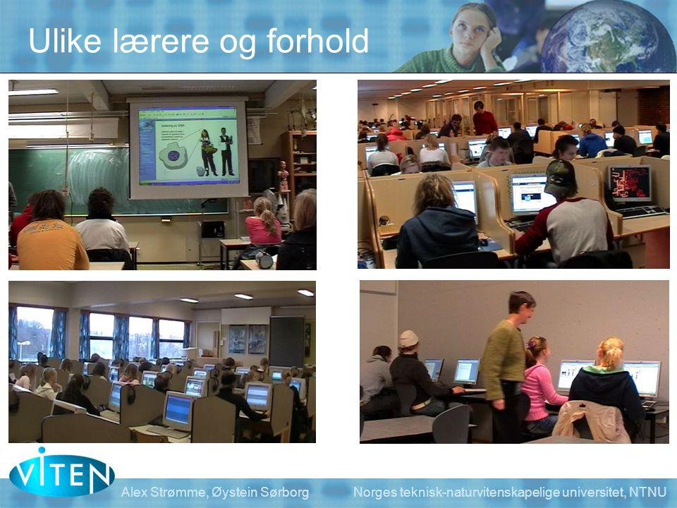 Alex Strømme, Øystein Sørborg Norges teknisk-naturvitenskapelige universitet, NTNU Ulike lærere og forhold