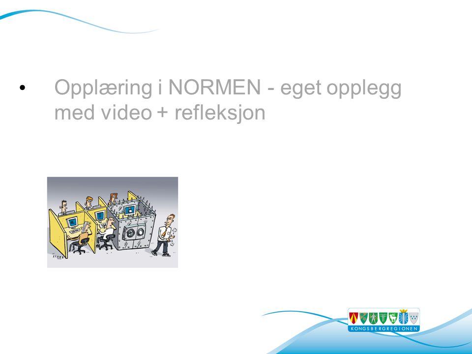 • Opplæring i NORMEN - eget opplegg med video + refleksjon