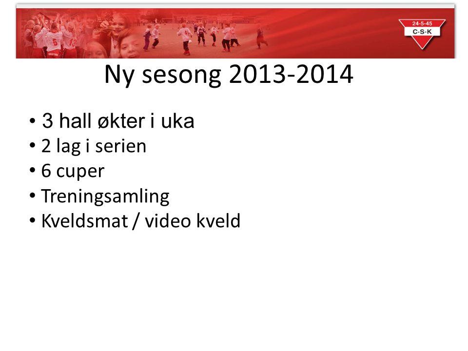 Ny sesong 2013-2014 • 3 hall økter i uka • 2 lag i serien • 6 cuper • Treningsamling • Kveldsmat / video kveld