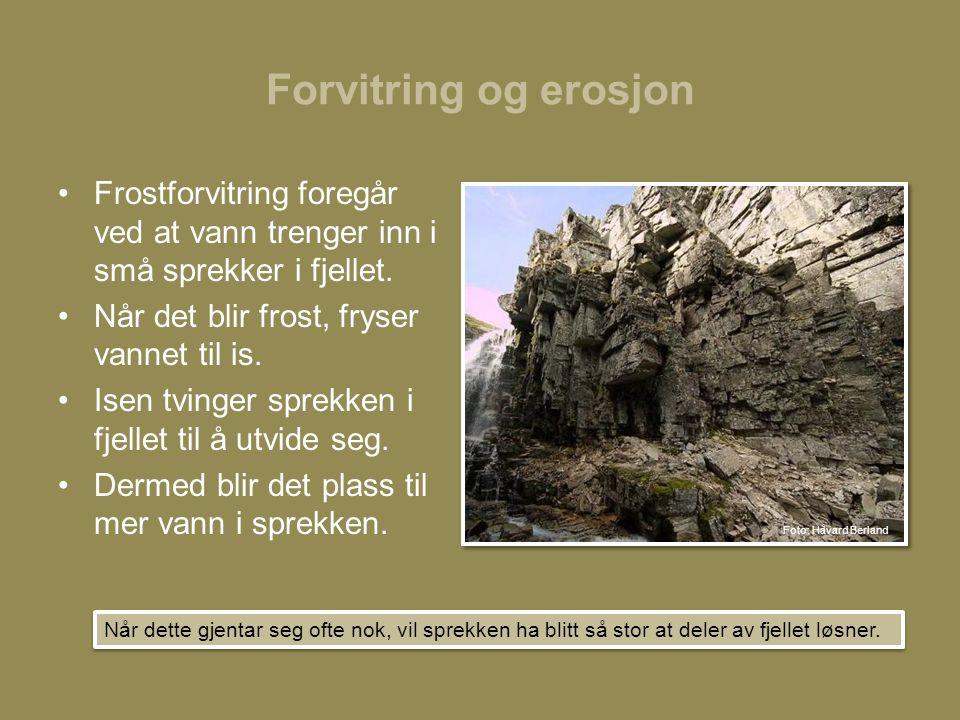 Forvitring og erosjon •Frostforvitring foregår ved at vann trenger inn i små sprekker i fjellet.