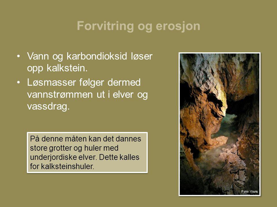 Forvitring og erosjon •Vann og karbondioksid løser opp kalkstein.