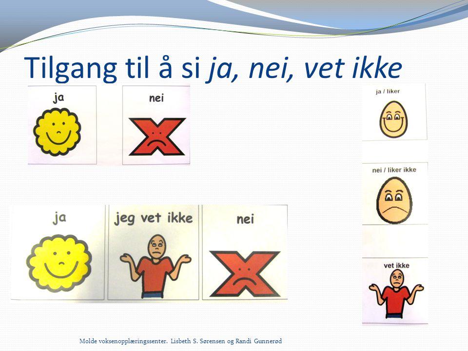 Tilgang til å si ja, nei, vet ikke Molde voksenopplæringssenter. Lisbeth S. Sørensen og Randi Gunnerød