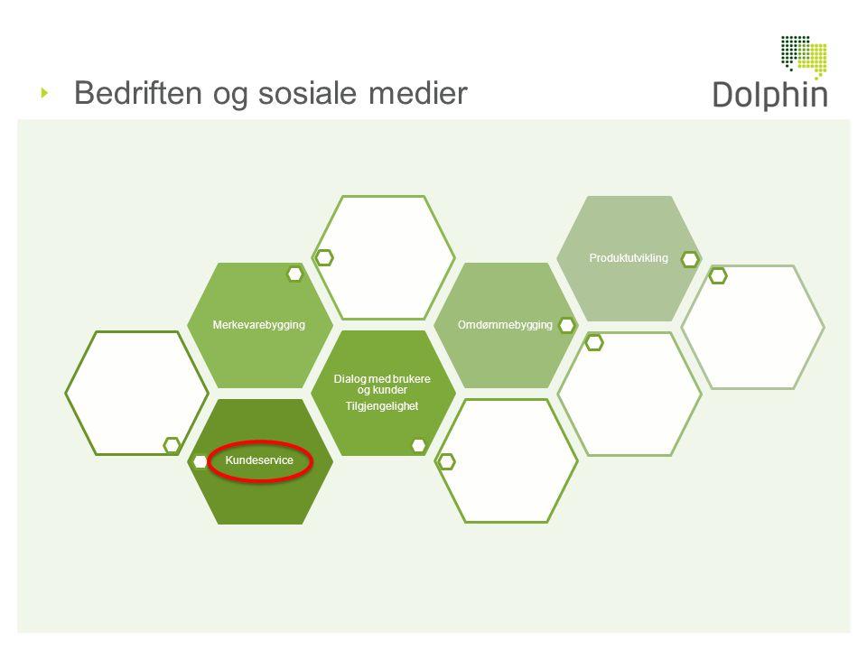 Bedriften og sosiale medier Kundeservice Dialog med brukere og kunder Tilgjengelighet MerkevarebyggingOmdømmebyggingProduktutvikling