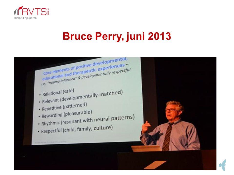 Bruce Perry, juni 2013