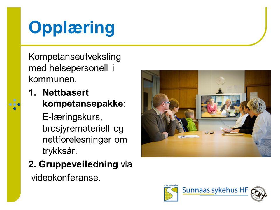Opplæring Kompetanseutveksling med helsepersonell i kommunen. 1.Nettbasert kompetansepakke: E-læringskurs, brosjyremateriell og nettforelesninger om t