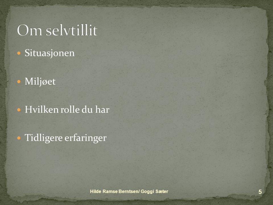  Situasjonen  Miljøet  Hvilken rolle du har  Tidligere erfaringer Hilde Ramse Berntsen/ Goggi Sæter 5