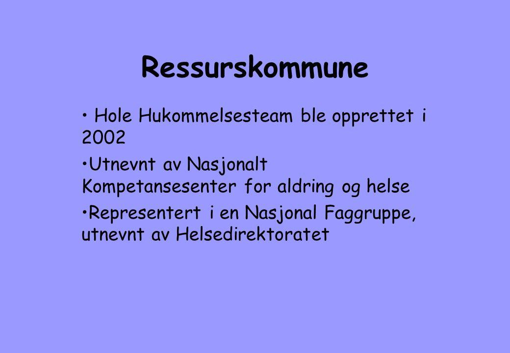 Ressurskommune • Hole Hukommelsesteam ble opprettet i 2002 •Utnevnt av Nasjonalt Kompetansesenter for aldring og helse •Representert i en Nasjonal Fag