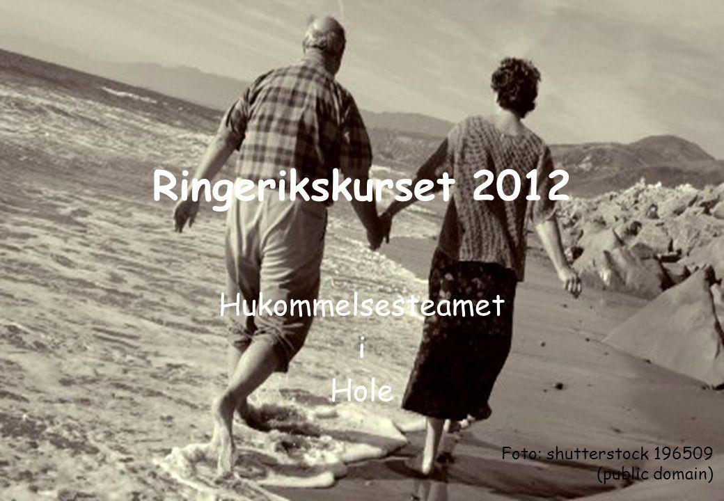 Ringerikskurset 2012 Hukommelsesteamet i Hole Foto: shutterstock 196509 (public domain)