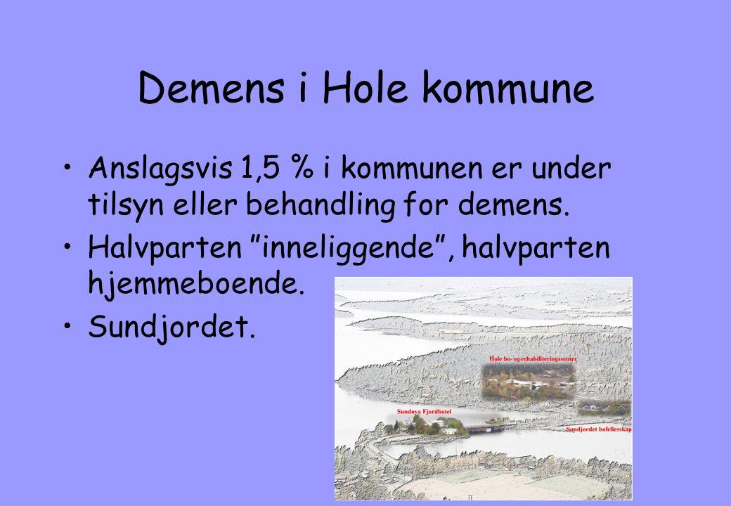 """Demens i Hole kommune •Anslagsvis 1,5 % i kommunen er under tilsyn eller behandling for demens. •Halvparten """"inneliggende"""", halvparten hjemmeboende. •"""