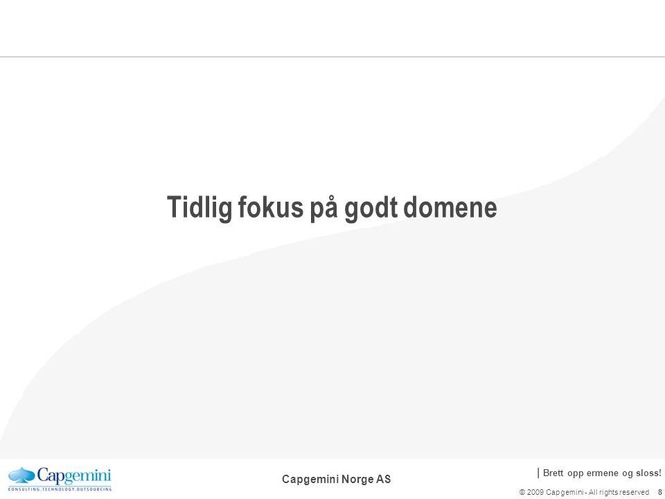   Brett opp ermene og sloss.Capgemini Norge AS Vær en ansvarlig utvikler.
