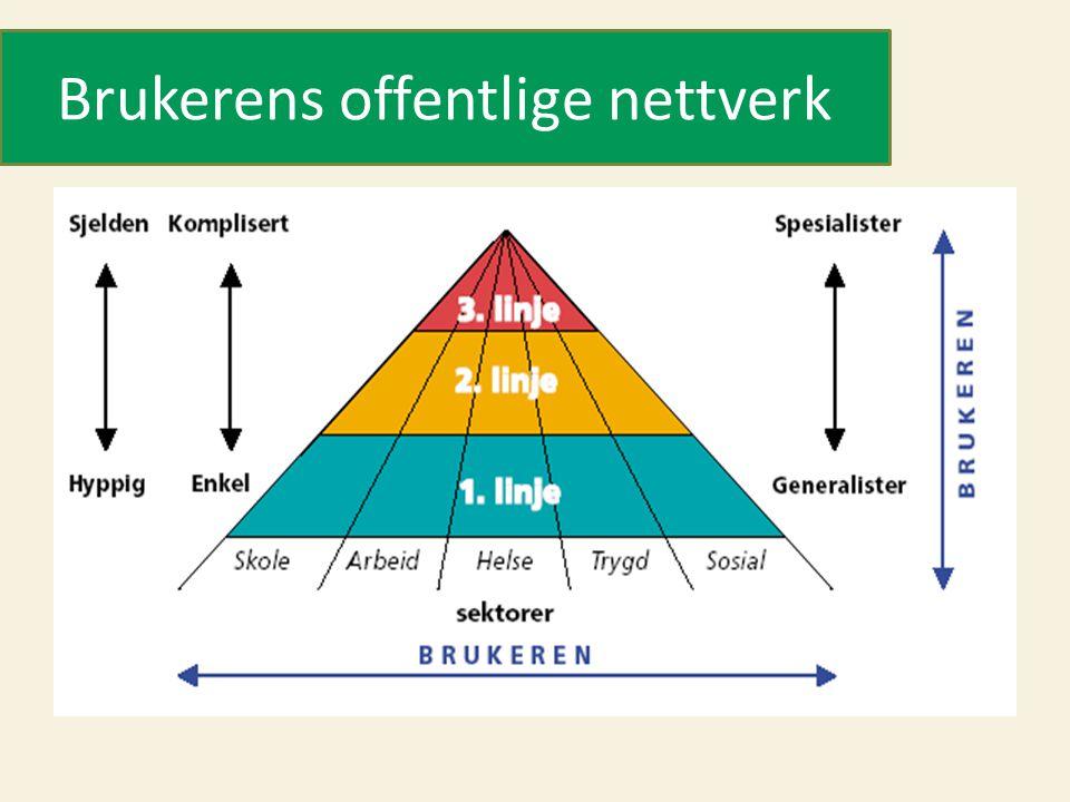 Brukerens offentlige nettverk