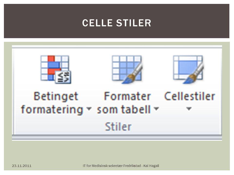 23.11.2011IT for Medisinsk sekretær Fredrikstad - Kai Hagali CELLE STILER