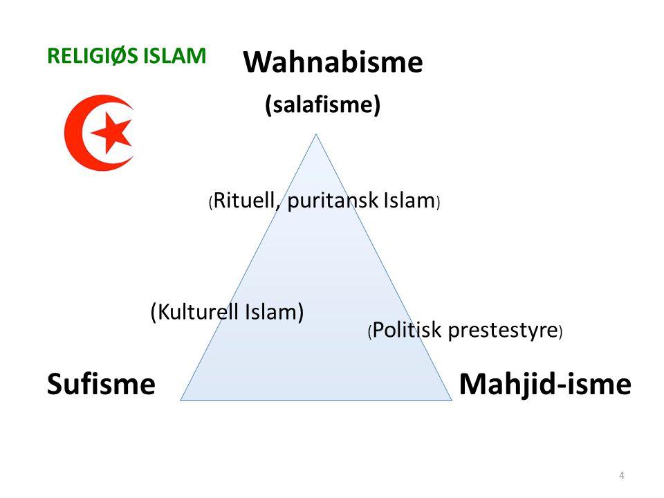 Wahnabisme (salafisme) SufismeMahjid-isme (Kulturell Islam) ( Rituell, puritansk Islam ) ( Politisk prestestyre ) RELIGIØS ISLAM 4